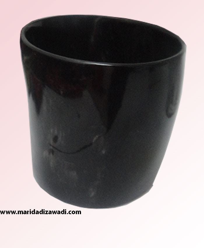 Cow Horn Vase small